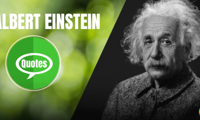 Albert Einstein Quote Image