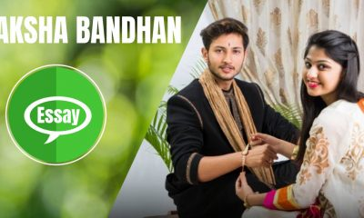 Raksha Bandhan Essay in Hindi